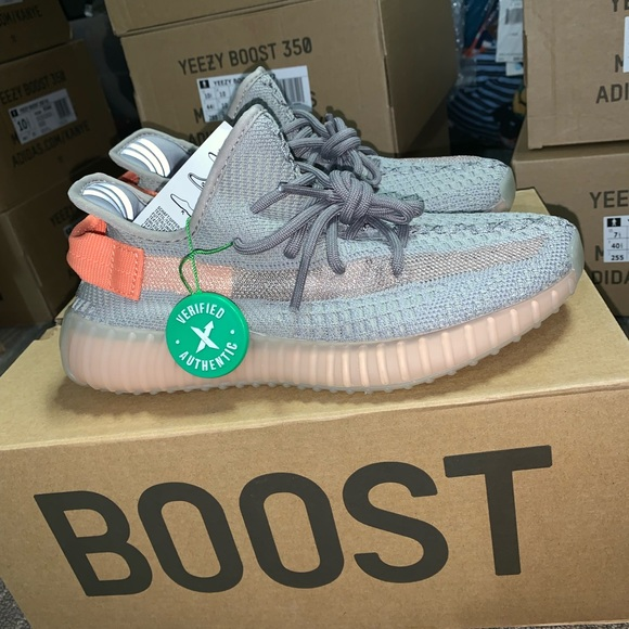 reputable site 1aa35 059ec Yeezy 340 boost true form NWT